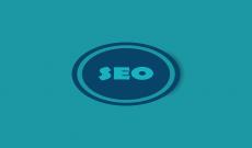 SEO Basics & Ranking