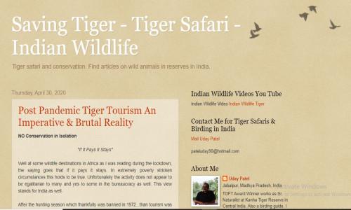 Tiger Blog